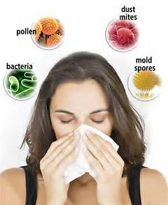 Allergies and Indoor Air Quality