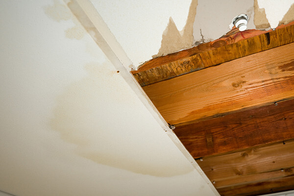 Water Damage Repair in Hale Corner, WI