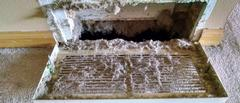 Air Duct and Dryer Vent Cleaning in Rice Lake, WI